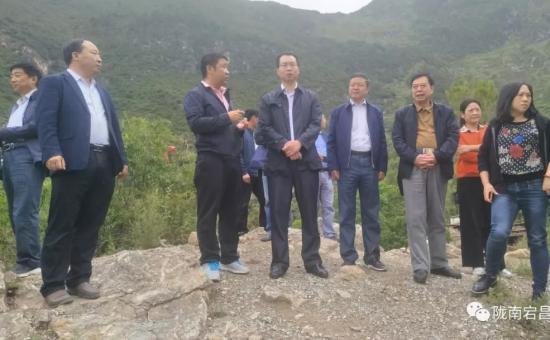 台盟中央调研组在两河口镇开展脱贫攻坚民主监督工作